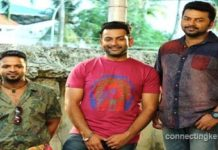 Amar Akbar Antony Video Song