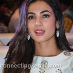 sonal chauhan hot sexy rare images (25)