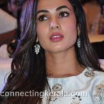 sonal chauhan hot sexy rare images (31)
