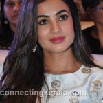 sonal chauhan hot sexy rare images (33)