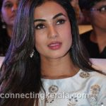 sonal chauhan hot sexy rare images (34)