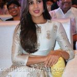 sonal chauhan hot sexy rare images (38)