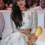 sonal chauhan hot sexy rare images (41)