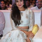 sonal chauhan hot sexy rare images (42)