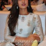 sonal chauhan hot sexy rare images (45)