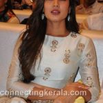 sonal chauhan hot sexy rare images (46)
