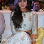 sonal chauhan hot sexy rare images (48)