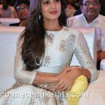 sonal chauhan hot sexy rare images (76)