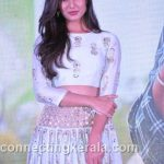 sonal chauhan hot sexy rare images (81)