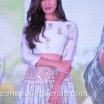 sonal chauhan hot sexy rare images (82)