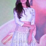 sonal chauhan hot sexy rare images (86)