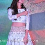 sonal chauhan hot sexy rare images (89)