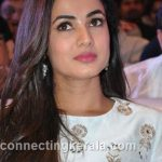 sonal chauhan hot sexy rare images (99)
