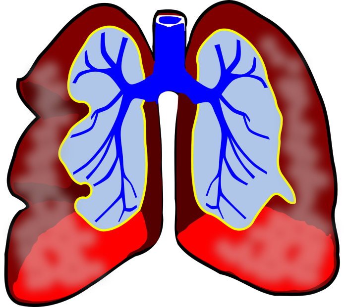 Remedies for piles and asthma
